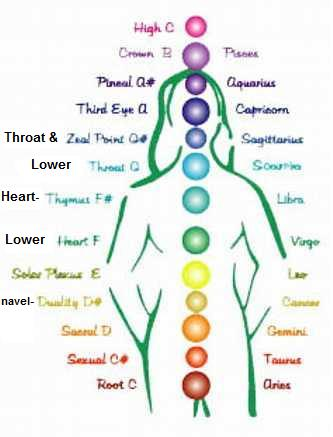 12 chakra notes | InstinctiveHealthParenting4U